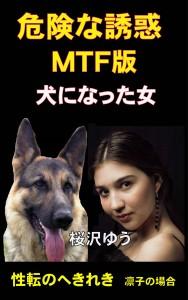 危険な誘惑MTF版